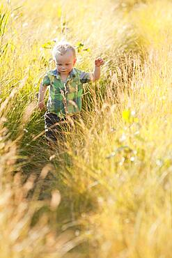 Caucasian boy walking in tall grass