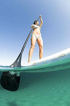 Low angle view of woman standing on paddle board