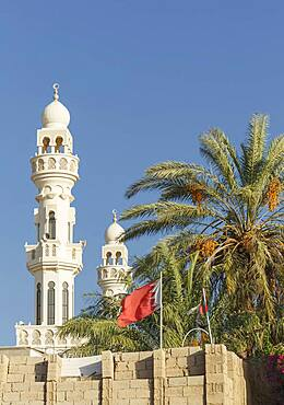 Towers and palm tree under blue sky