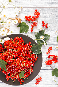 Red berries and leaves on table with flowers