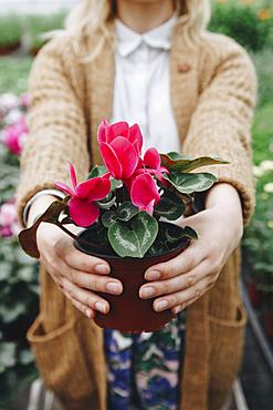 Caucasian girl holding flowers in pot