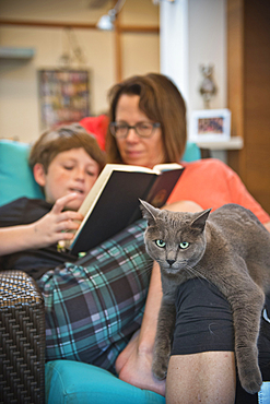 Caucasian mother and son reading book and relaxing with cat