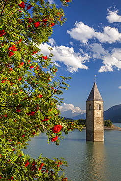 Campanile nel Lago di Resia, rising above Lago di Resia  (Reschensee) (Lake Reschen), a reservoir beneath which are the submerged hamlets of Arlung, Piz, Gorf and Stockerhofe, South Tyrol, Italy, Europe