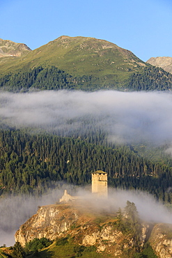 Tower of Steinsberg Castle framed by woods, Ardez, district of Inn, Lower Engadine, Canton of Graubunden, Switzerland, Europe