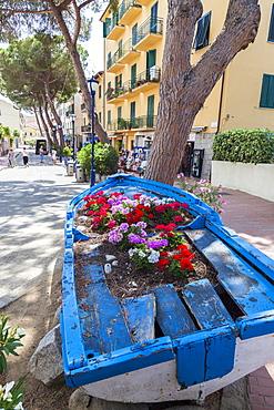 Wood boat decorated with flowers, Marina Di Campo, Elba Island, Livorno Province, Tuscany, Italy, Europe