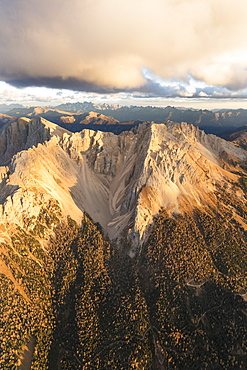 Aerial view of woods on the ridges of Latemar massif, Dolomites, South Tyrol, Italy, Europe
