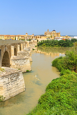 Puente Romano (Roman bridge) along Guadalquivir River with Mezquita Cathedral in background, Cordoba, UNESCO World Heritage Site, Andalusia, Spain, Europe