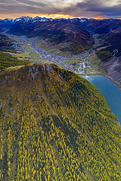 Sunset over larch woods on Crap de La Pare ridge towards Livigno village and lake, aerial view, Valtellina, Lombardy, Italy, Europe