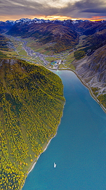 Aerial panoramic of sunset over Livigno and larch trees along the lake in autumn, Sondrio province, Valtellina, Lombardy, Italy, Europe