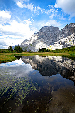 Rocky peak of Wellhorn mountain reflected in water in summer, Grosse Scheidegg Pass, Bernese Alps, Canton of Bern, Switzerland, Europe