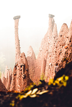 Conical rock pillars of the earth pyramids emerging from fog, Renon (Ritten), Bolzano, South Tyrol, Italy, Europe
