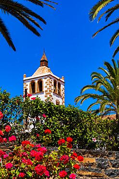 Colorful flowers framing Santa Maria church tower under the blue sky, Betancuria, Fuerteventura, Canary Islands, Spain, Atlantic, Europe