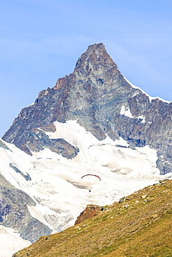 A paraglider flies in front of the majestic Obergabelhorn, Canton of Valais, Pennine Alps, Swiss Alps,  Switzerland, Europe