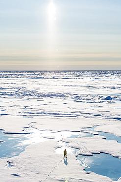Watchguard at North Pole, Arctic