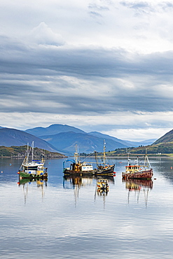 Fishing boats, Bay of Ullapool, Ross and Cromarty, Highlands, Scotland, United Kingdom, Europe