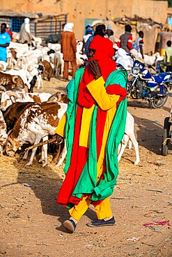 Bodyguards of the Sultan of Agadez, Animal market, Agadez, Niger, Africa
