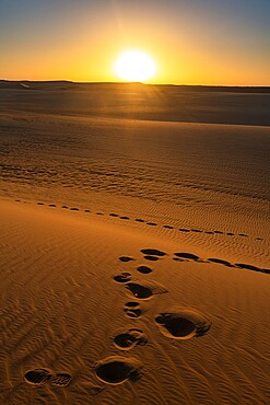 Footprints and sand ripples in the sand dunes of the Tenere Desert, Sahara, Niger, Africa