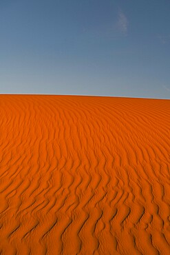 Sand ripples in the sand dunes of the Tenere Desert, Sahara, Niger, Africa