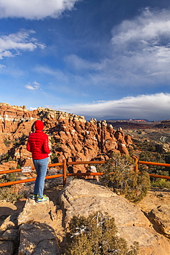 Devils Canyon, Arches National Park, Moab, Utah, United States of America, North America