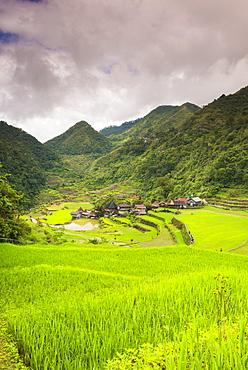 Rice Terraces, Bangaan, UNESCO World Heritage Site, Luzon, Philippines, Southeast Asia, Asia