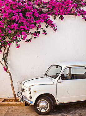 Fiat under tree in Mojacar, Andalucia, Spain, Europe