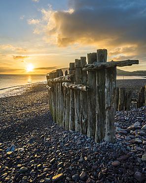 Remains of a wooden groyne at Porlock Weir, sunrise in spring, Somerset, England, United Kingdom, Europe