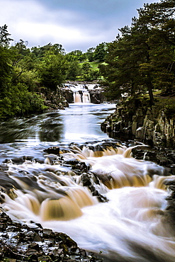 Low Force waterfall, Teesdale, England, United Kingdom, Europe - 1204-20