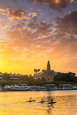 Torre del Oro (Gold Tower) at sunrise, Seville, Andalusia, Spain, Europe