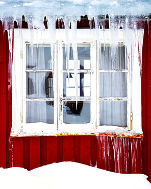 Frozen icicles on a traditional Rorbu window in winter, Nordland, Lofoten Islands, Norway, Europe