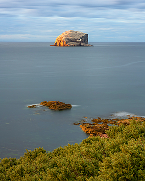Bass Rock in early evening light, Firth of Forth, East Lothian, Scotland, United Kingdom, Europe