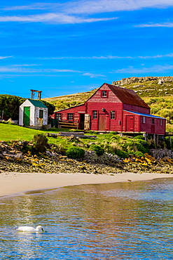 Scenic view of a house on West Point, a beautiful, quaint pristine place that only has two residents, Falkland Islands, South America