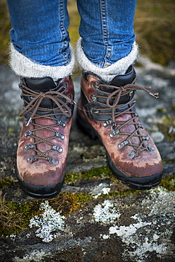 Walking near Newtonmore in the Cairngorms National Park, Highlands, Scotland, United Kingdom, Europe