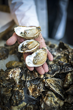 A man holds up a three open oysters at a fish stall in London's Borough Market, London, England, United Kingdom, Europe