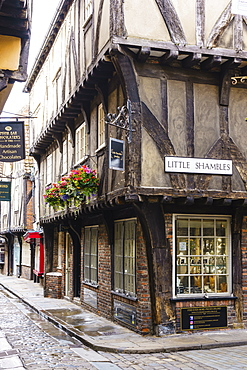 The Shambles, a preserved medieval street in York, North Yorkshire, England, United Kingdom, Europe - 1226-1036