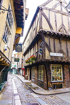The Shambles, a preserved medieval street in York, North Yorkshire, England, United Kingdom, Europe - 1226-1039