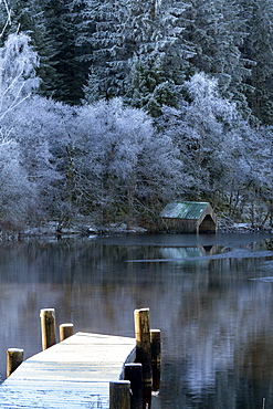 Loch Ard in mid-winter, with hoar frost, Aberfoyle, Loch Lomond and the Trossachs National Park, Stirling District, Scotland, United Kingdom, Europe