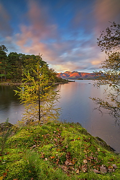 Autumn twilight over distant Lakeland Fell, Skiddaw and Derwent Water from Brandlehow Wood, Borrowdale, Lake District National Park, UNESCO World Heritage Site, Cumbria, England, United Kingdom, Europe