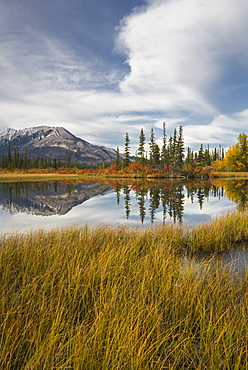 Autumn foliage and mountain lake, Icefields Parkway, Jasper National Park, UNESCO World Heritage Site, Canadian Rockies, Alberta, Canada, North America