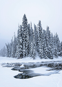 Snow-covered winter forest with frozen lake, Emerald Lake, Yoho National Park, UNESCO World Heritage Site, British Columbia, The Rockies, Canada, North America