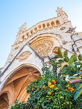 Church and orange trees, Soller, Mallorca, Balearic Islands, Spain, Mediterranean, Europe