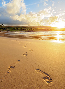 Anakena Beach at sunset, Easter Island, Chile, South America