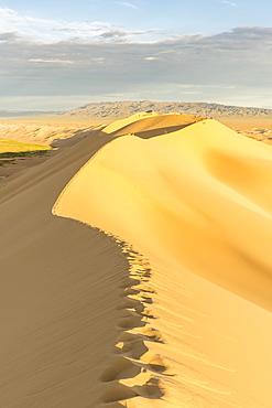 People walking on Khongor sand dunes in Gobi Gurvan Saikhan National Park, Sevrei district, South Gobi province, Mongolia, Central Asia, Asia