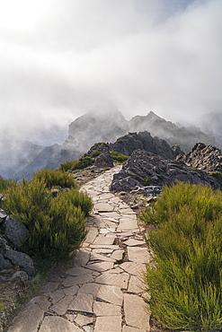 Mist on the mountains of Vereda do Areeiro, the trail that links Pico Ruivo to Pico do Arieiro. Funchal, Madeira, Portugal, Atlantic, Europe