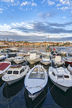 Boats at the harbour with the old town in the background, Rovinj, Istria county, Croatia, Europe