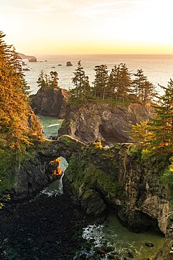 Landscape at sunset at the natural bridges in Samuel H. Boardman Scenic Corridor State Park, Brookings, Curry county, Oregon, United States of America, North America