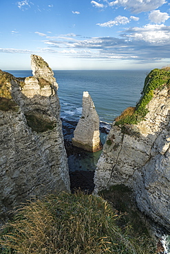 Porte d'Aval pinnacle, Etretat, Normandy, France, Europe