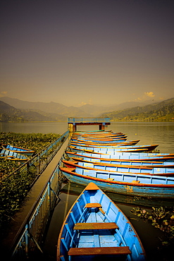 Boats at harbour on Fewa Lake, Pokhara, Nepal, Asia