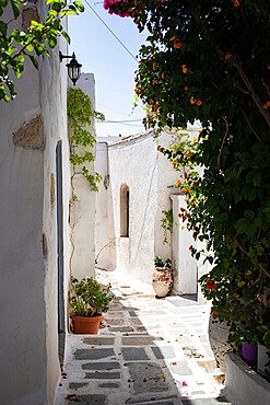 Traditional whitewashed house in Chora, Serifos, Cyclades, Greek Islands, Greece, Europe