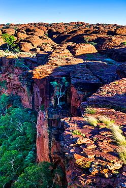 Sandstone Domes on a cliff edge, with the Garden of Eden below, at Watarrka (Kings Canyon), Northern Territory, Australia, Pacific