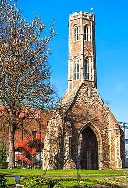 Greyfriars Tower, early spring in Tower gardens, King's Lynn, Norfolk, England, United Kingdom, Europe